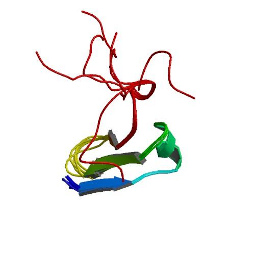 Recombinant Human Neuregulin-1 ( EGF-like domain)